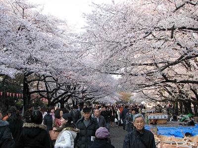 เที่ยวโตเกียว Ueno Park