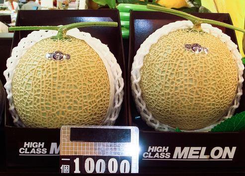 melon อีก 1 ของฝากจากญี่ปุ่นที่น่าสนใจ